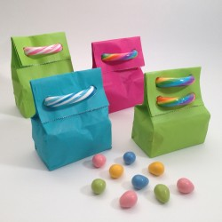 Cute treat bags